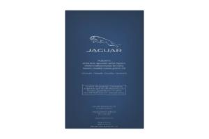Туалетная вода мужская Classic Jaguar 100мл