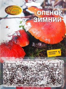 Мицелий зерновой Опенок зимний