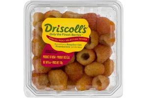 Driscoll's Sunshine Raspberries