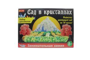 Набір Ранок для дослідів Сад в кристалах великий