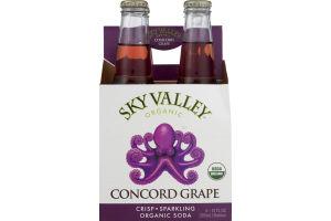 Sky Valley Organic Soda Concord Grape - 4 CT