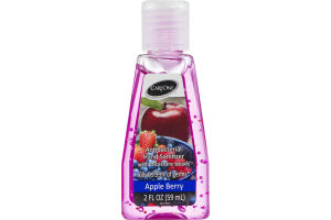 CareOne Antibacterial Hand Sanitizer With Moisture Beads Apple Berry