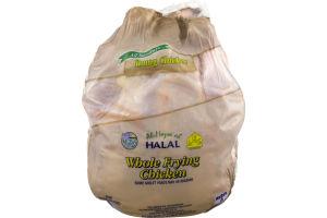 Al-Mazra'ah Halal Whole Chicken Fryer