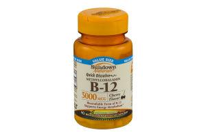Sundown Naturals Dietary Supplement B-12 5000mcg - 90 CT