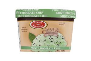 Klein's Real Kosher Smooth & Creamy Non-Dairy Frozen Dessert Mint Chocolate Chip