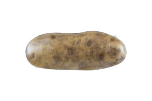 Harvest Select Cooking Potato