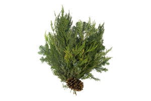 Evergreen Bunches Door Swag Noble Fir, Cedar, Juniper & Pine Cones