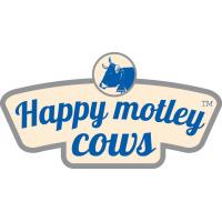 Happy Motley Cows