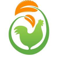 Organic Chicken